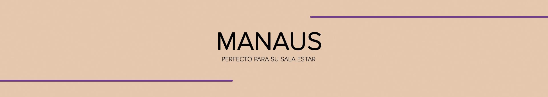 Home para TV Manaus
