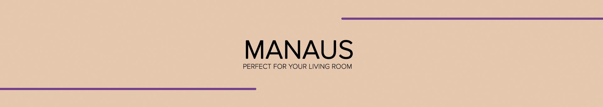 Manaus Entertainment center